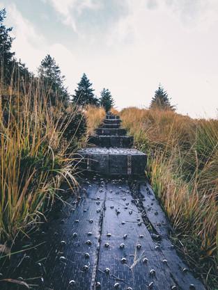 Ireland_1.jpg