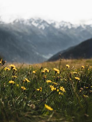 Hiking_E5_116.jpg