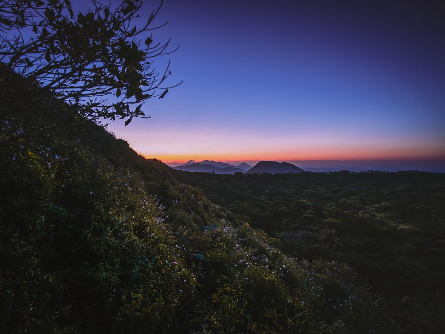 The Plains At Dawn