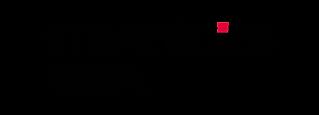 logo - Stratégies Festival.png