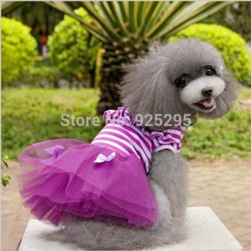 Roupa Adorável Cão