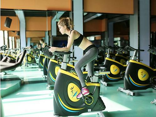 Fitness Musculação