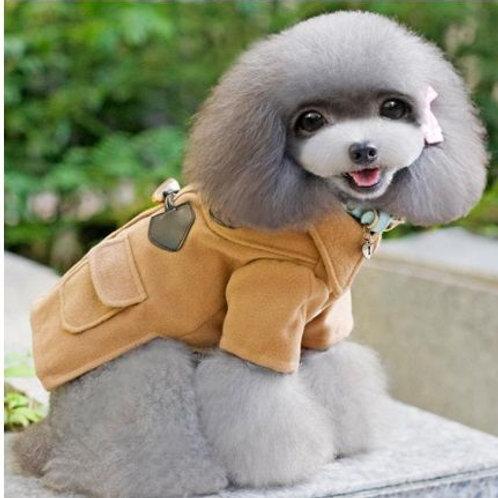 Roupa Inverno Cão Elegante