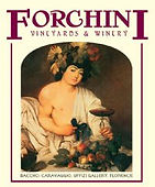 forchini vineyards.jpg