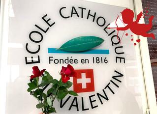 Une rose pour la Saint-Valentin