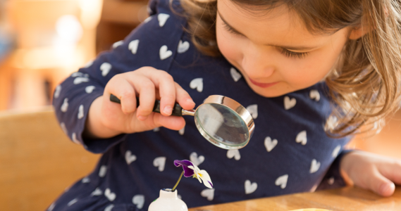 Le Valentin - Montessori