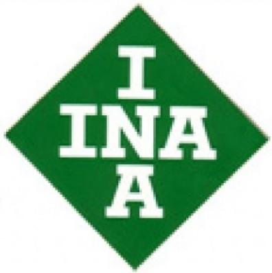 INAA.jpg