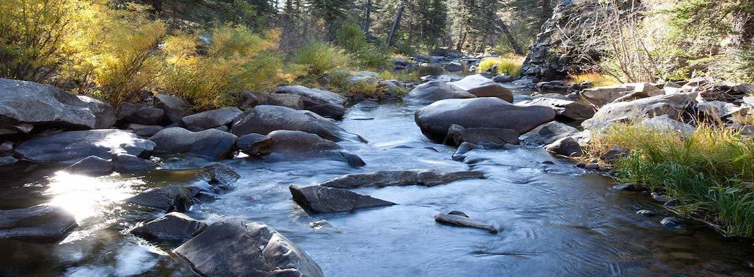 vallecitos-creek.jpg