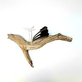 Blue Jay Brooch Display (sold)