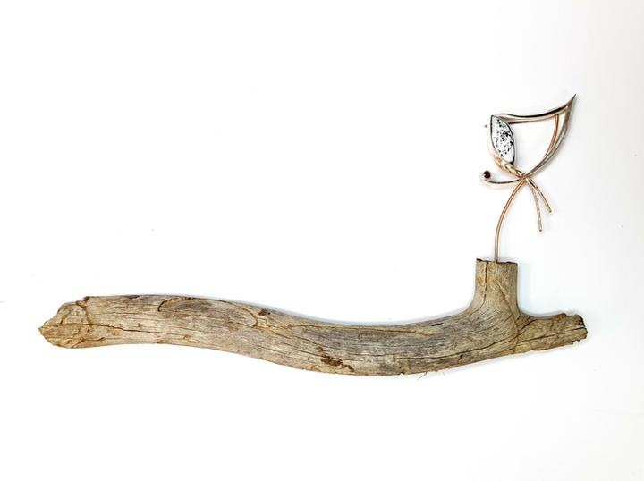 Downy Wood Pecker Display