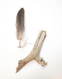 Guinea Fowl Brooch Display (sold)