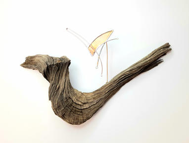 Western Mockingbird Brooch Display