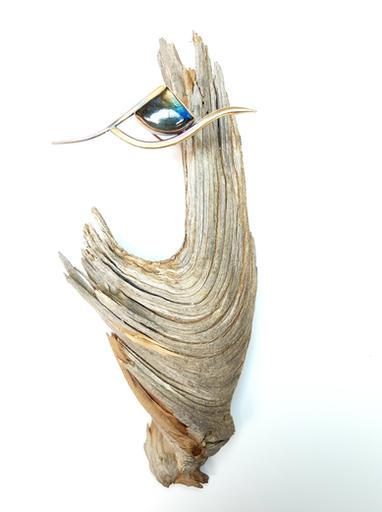 European Starling Brooch Display