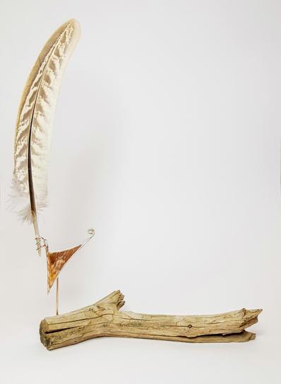 Sage Grouse Display