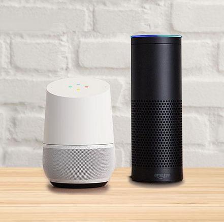 Google-home_Amazon-echo.jpg