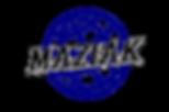 Maziak Company Globe Logo