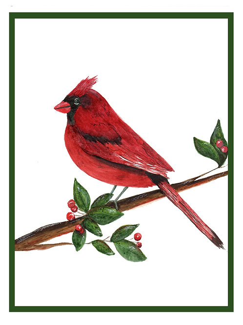 Red Cardinal  Note Card