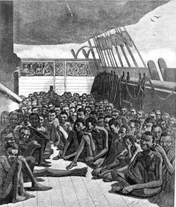 Slave deck, Bark Wildfire