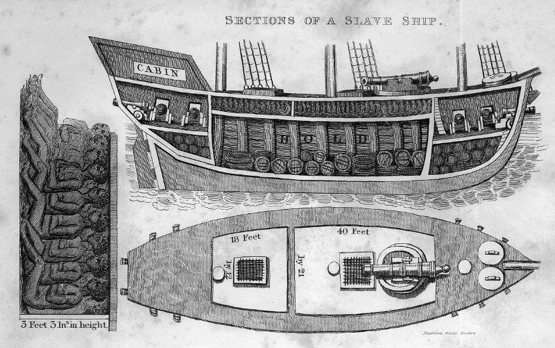 Cross -section of a slave ship