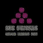 logo-site TGN.jpg