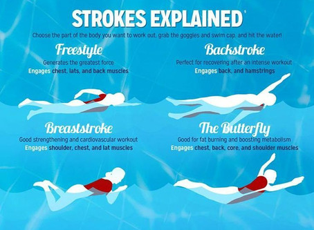 What are the four main swim strokes?