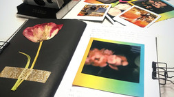 Polaroid Journal...