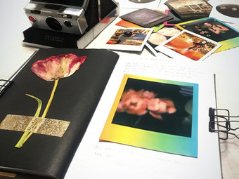 Polaroid Journal...