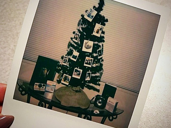 Polaroid Christmas Tree