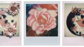 Colorant on Polaroid Film