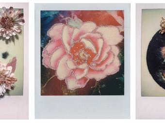 Colorant on Polaroid Film