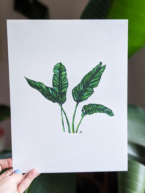 Art Print   Banana Leaf I Watercolour Painting
