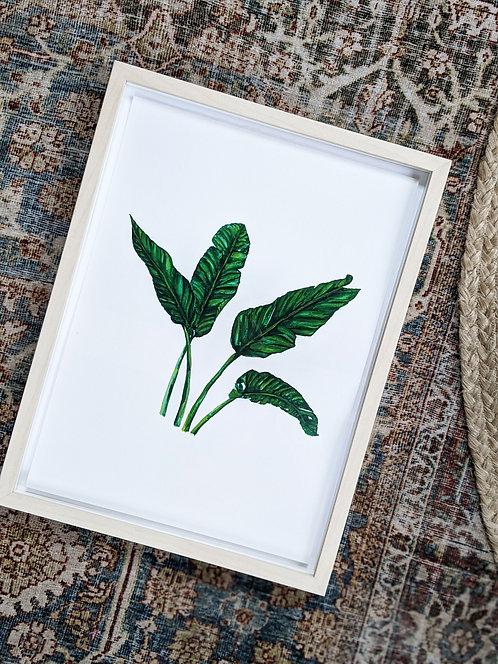 Original Banana Leaf I Watercolour Painting