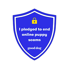 Unite to end puppy scams.png