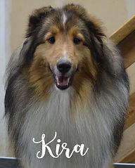 Kira 2.jpg