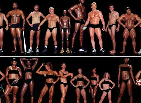 Comparison of Body Types and Body Image