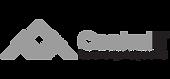logo_site_CentralIT cinza.png