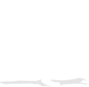 featured work main cat 02.png