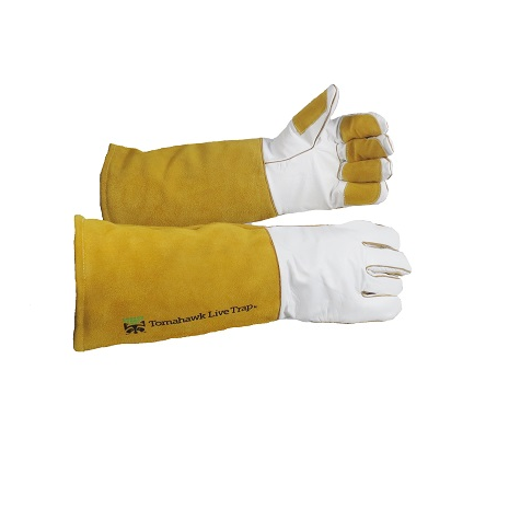 Tomahawk's Bite Guard Gloves Grain Leather with Kevlar Lining