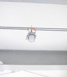 Bird netting - Warehouse