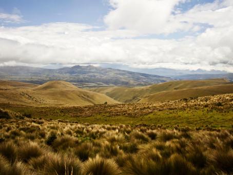 Programa Carbono Cero se pone en marcha en el Ecuador