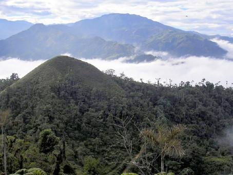 4.505 hectáreas de El Oro fueron declaradas como Área de Protección Hídrica Santa Rosa