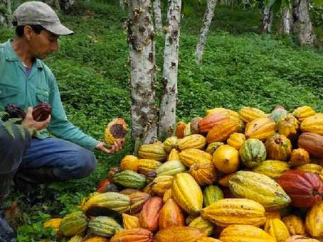 Ecuador, referente en la gestión de conservación y uso sostenible de los recursos naturales