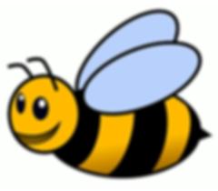 bumble-bee_actual.png