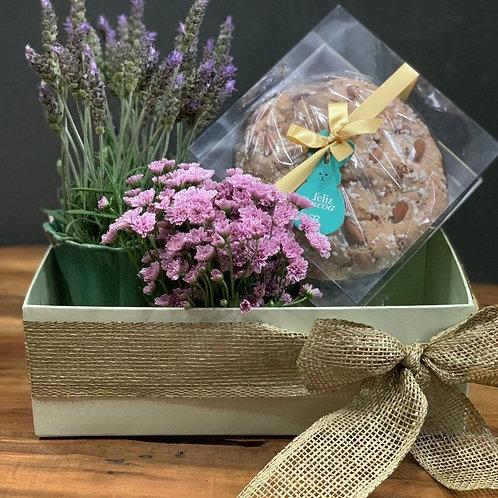 Caixa com Vasinhos de flores e Colomba Pascal DAMA