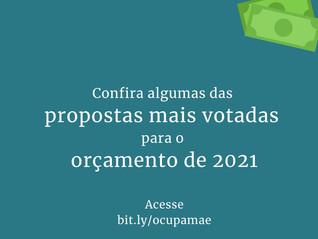 Confira algumas das propostas mais votadas para o orçamento de 2021
