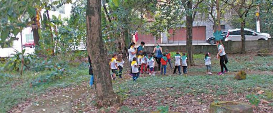 5 adultos e mais de dez crianças explorando uma grande área verde. Há um grande gramado coberto com folhas secas, um arbustro, 4 troncos de árvores cortados, e mais de dez árvores.