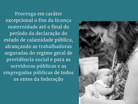 Prorrogação da Licença Maternidade - PL 3913/2020