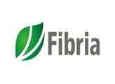 Fibria Celulose S/A