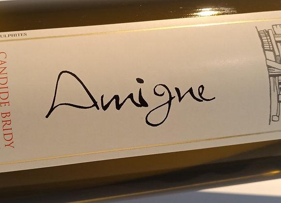Amigne