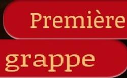 PremiereGrappeCarée1.jpg